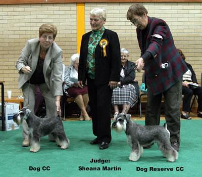 Dog CC & Res Dog CC