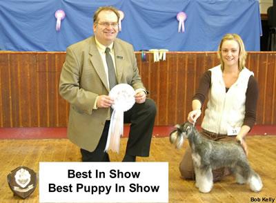 Best In Show & Best Puppy In Show