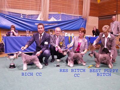 Judge with Bitch CC & Rescc & Best Puppy Bitch