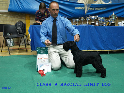 Special Limit Dog