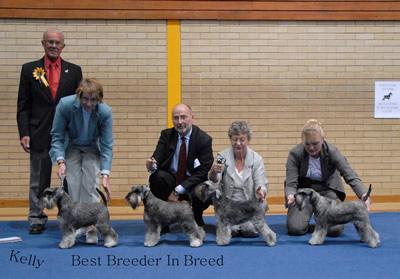 Best Breeder In Breed