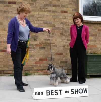 Reseve Best In Show