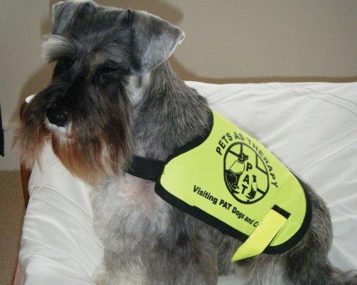 Mary Baxter Pat Dog