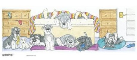 Joint Miniature Schnauzer Eye Fund